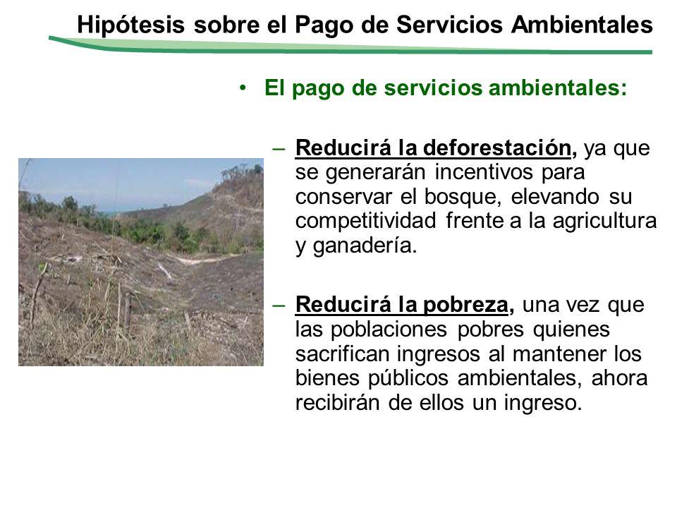 El pago de servicios ambientales: –Reducirá la deforestación, ya que se generarán incentivos para conservar el bosque, elevando su competitividad fren