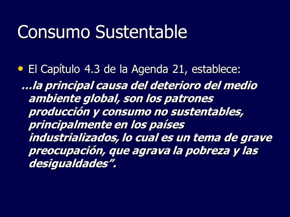 Consumo Sustentable El Capítulo 4.3 de la Agenda 21, establece: El Capítulo 4.3 de la Agenda 21, establece: …la principal causa del deterioro del medi