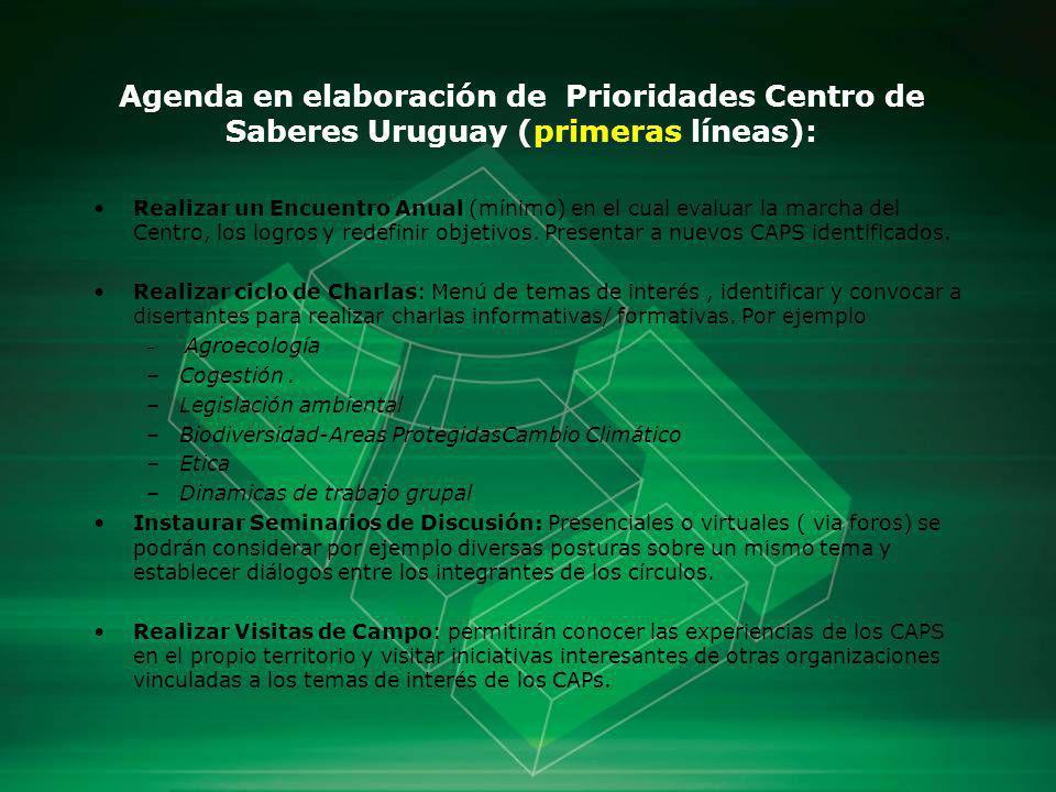 Agenda en elaboración de Prioridades Centro de Saberes Uruguay (primeras líneas): Realizar un Encuentro Anual (mínimo) en el cual evaluar la marcha de