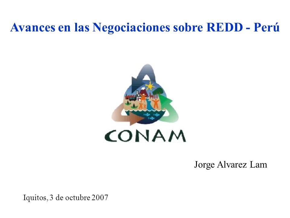 Avances en las Negociaciones sobre REDD - Perú Iquitos, 3 de octubre 2007 Jorge Alvarez Lam