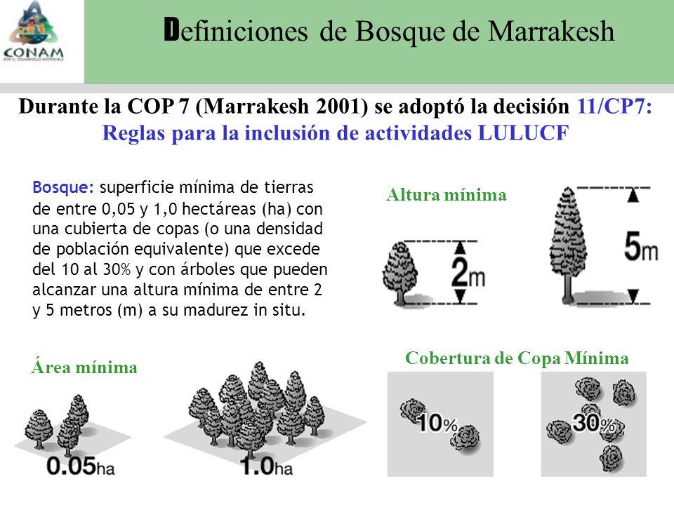 D efiniciones de Bosque de Marrakesh Cobertura de Copa Mínima Altura mínima Área mínima Bosque: superficie mínima de tierras de entre 0,05 y 1,0 hectáreas (ha) con una cubierta de copas (o una densidad de población equivalente) que excede del 10 al 30% y con árboles que pueden alcanzar una altura mínima de entre 2 y 5 metros (m) a su madurez in situ.