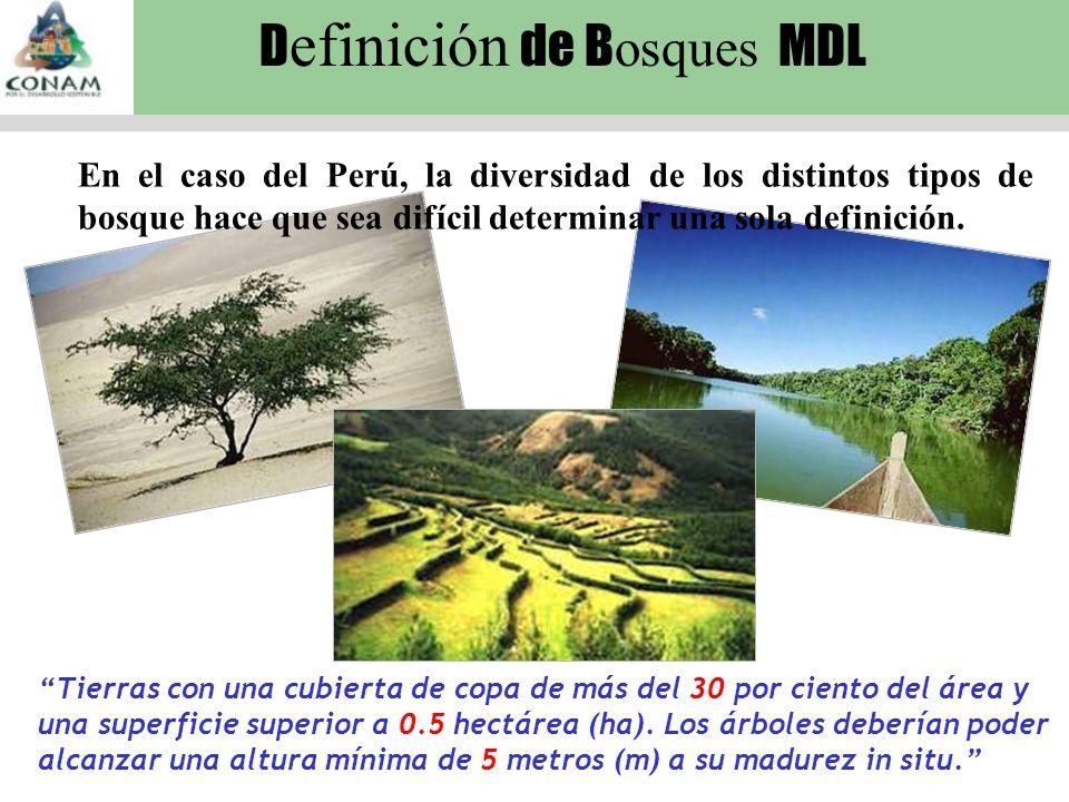 En el caso del Perú, la diversidad de los distintos tipos de bosque hace que sea difícil determinar una sola definición.