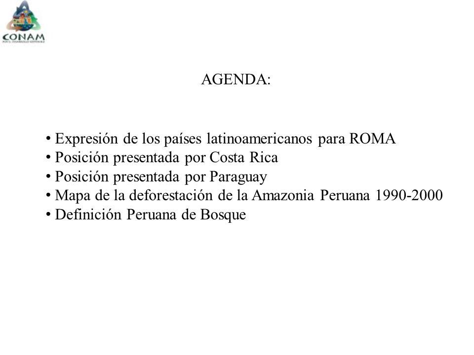 Expresión de los países latinoamericanos para ROMA Posición presentada por Costa Rica Posición presentada por Paraguay Mapa de la deforestación de la Amazonia Peruana 1990-2000 Definición Peruana de Bosque AGENDA: