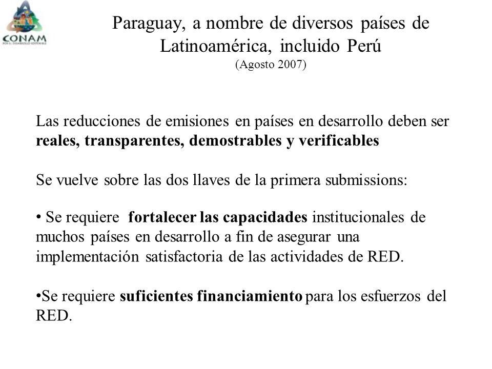 Paraguay, a nombre de diversos países de Latinoamérica, incluido Perú (Agosto 2007) Las reducciones de emisiones en países en desarrollo deben ser reales, transparentes, demostrables y verificables Se vuelve sobre las dos llaves de la primera submissions: Se requiere fortalecer las capacidades institucionales de muchos países en desarrollo a fin de asegurar una implementación satisfactoria de las actividades de RED.