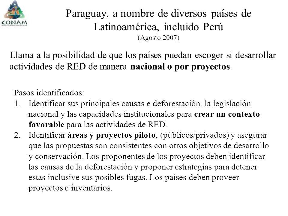 Llama a la posibilidad de que los países puedan escoger si desarrollar actividades de RED de manera nacional o por proyectos.