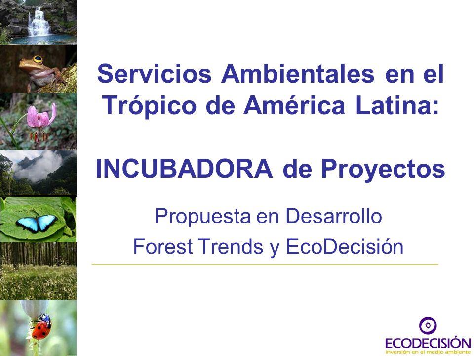 Servicios Ambientales en el Trópico de América Latina: INCUBADORA de Proyectos Propuesta en Desarrollo Forest Trends y EcoDecisión