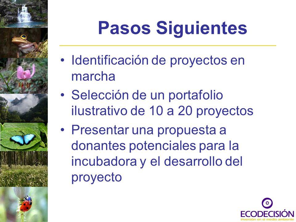 Pasos Siguientes Identificación de proyectos en marcha Selección de un portafolio ilustrativo de 10 a 20 proyectos Presentar una propuesta a donantes