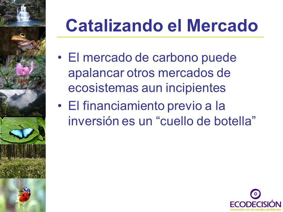 Catalizando el Mercado El mercado de carbono puede apalancar otros mercados de ecosistemas aun incipientes El financiamiento previo a la inversión es