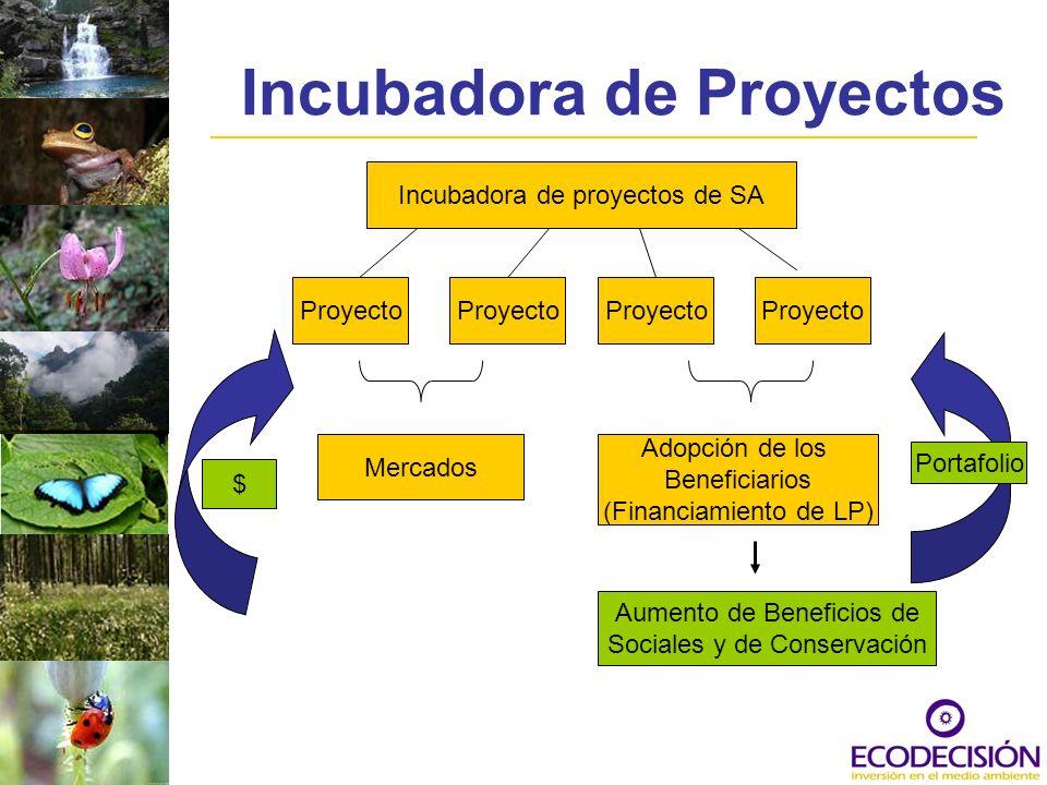 Características del Portafolio Alto potencial para el financiamiento de largo plazo: mercados o adopción Énfasis en carbono Se cuenta con organizaciones comunitarias de alta credibilidad Compromiso con la conservación de la biodiversidad Capacidad institucional fuerte para entregar Capacidad para agregar