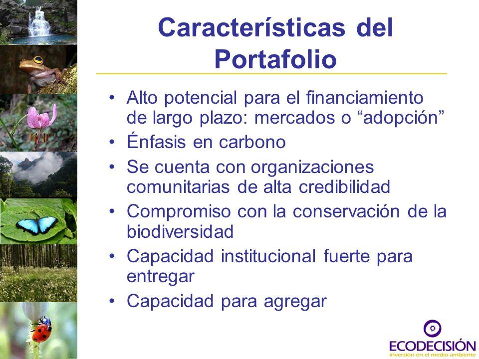 Características del Portafolio Alto potencial para el financiamiento de largo plazo: mercados o adopción Énfasis en carbono Se cuenta con organizacion