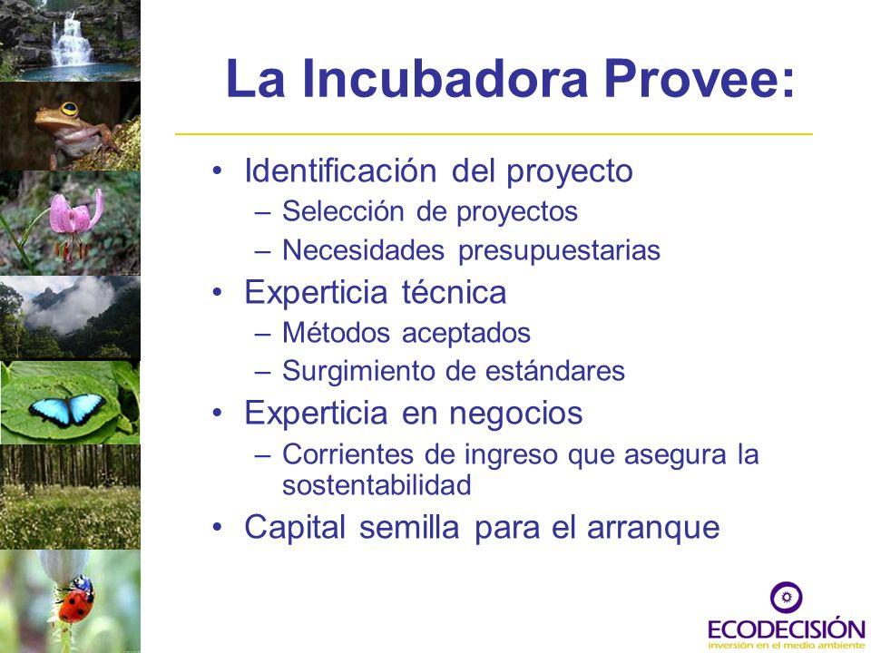 La Incubadora Provee: Identificación del proyecto –Selección de proyectos –Necesidades presupuestarias Experticia técnica –Métodos aceptados –Surgimie