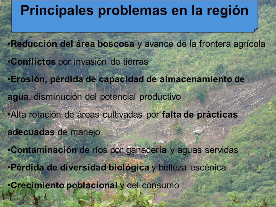 Principales problemas en la región Reducción del área boscosa y avance de la frontera agrícola Conflictos por invasión de tierras Erosión, pérdida de