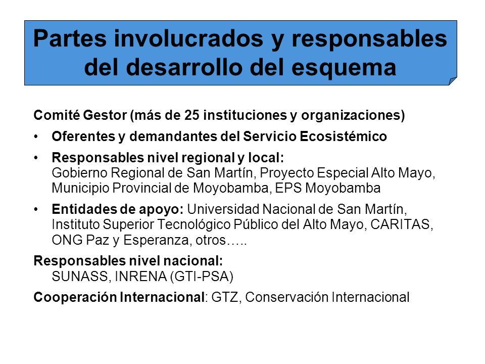 Partes involucrados y responsables del desarrollo del esquema Comité Gestor (más de 25 instituciones y organizaciones) Oferentes y demandantes del Ser