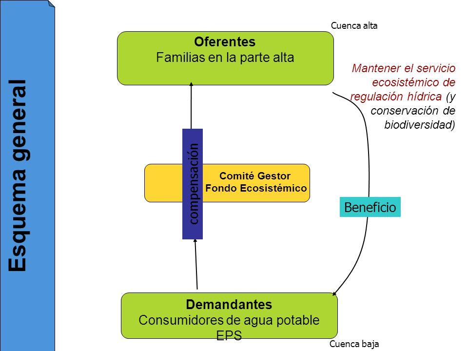 Oferentes Familias en la parte alta Demandantes Consumidores de agua potable EPS Comité Gestor Fondo Ecosistémico Cuenca alta Cuenca baja Mantener el
