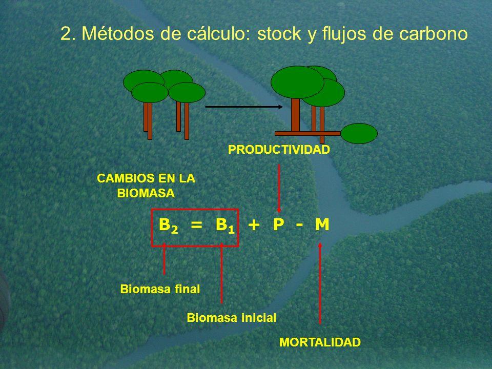 B 2 = B 1 + P - M Biomasa inicial Biomasa final CAMBIOS EN LA BIOMASA MORTALIDAD PRODUCTIVIDAD 2. Métodos de cálculo: stock y flujos de carbono