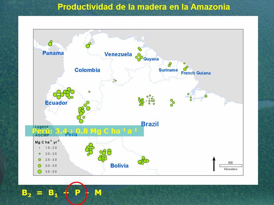 Productividad de la madera en la Amazonia Perú: 3.4 0.8 Mg C ha -1 a -1 B 2 = B 1 + P - M