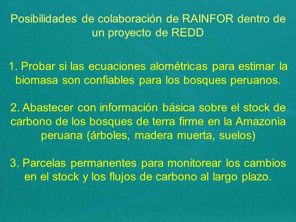 Posibilidades de colaboración de RAINFOR dentro de un proyecto de REDD 1. Probar si las ecuaciones alométricas para estimar la biomasa son confiables