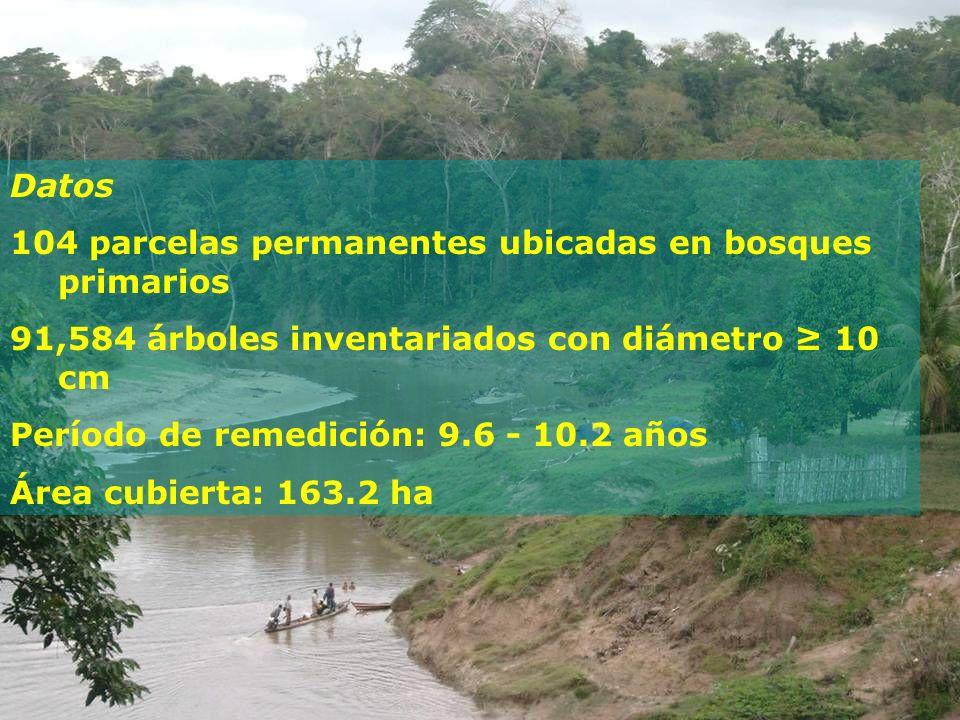 Datos 104 parcelas permanentes ubicadas en bosques primarios 91,584 árboles inventariados con diámetro 10 cm Período de remedición: 9.6 - 10.2 años Ár