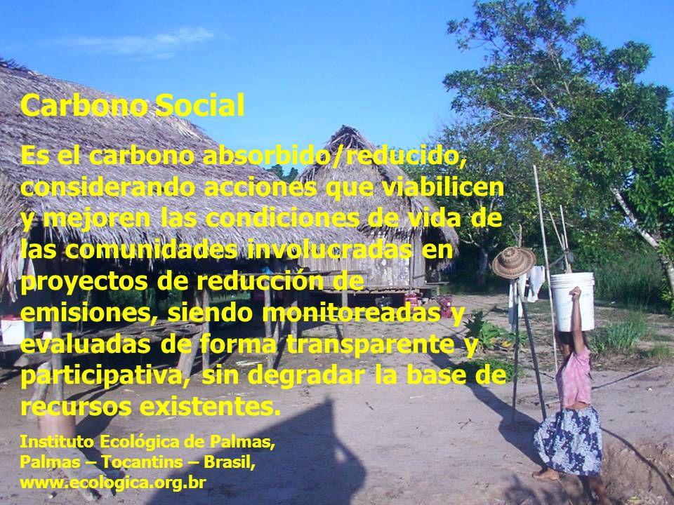Carbono Social Es el carbono absorbido/reducido, considerando acciones que viabilicen y mejoren las condiciones de vida de las comunidades involucradas en proyectos de reducción de emisiones, siendo monitoreadas y evaluadas de forma transparente y participativa, sin degradar la base de recursos existentes.