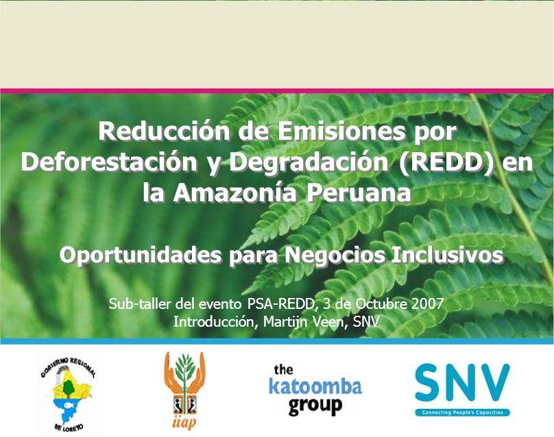 Reducción de Emisiones por Deforestación y Degradación (REDD) en la Amazonía Peruana Oportunidades para Negocios Inclusivos Sub-taller del evento PSA-
