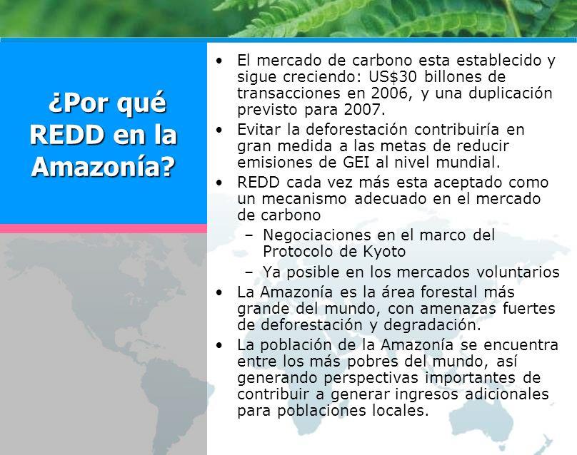 ¿Por qué REDD en la Amazonía? ¿Por qué REDD en la Amazonía? El mercado de carbono esta establecido y sigue creciendo: US$30 billones de transacciones