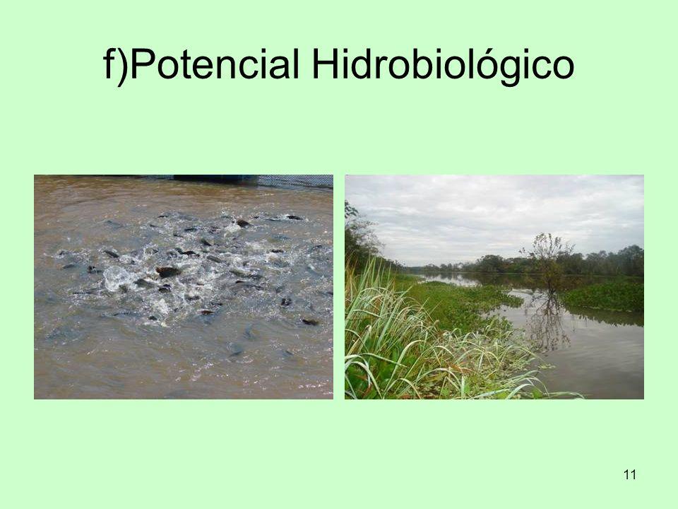 11 f)Potencial Hidrobiológico