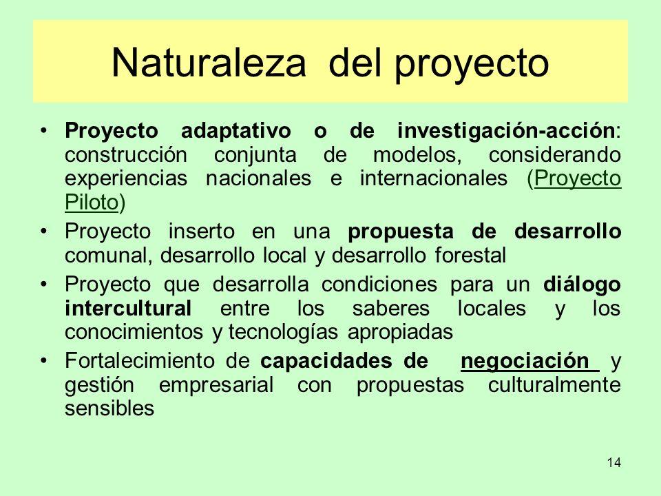 14 Naturaleza del proyecto Proyecto adaptativo o de investigación-acción: construcción conjunta de modelos, considerando experiencias nacionales e int