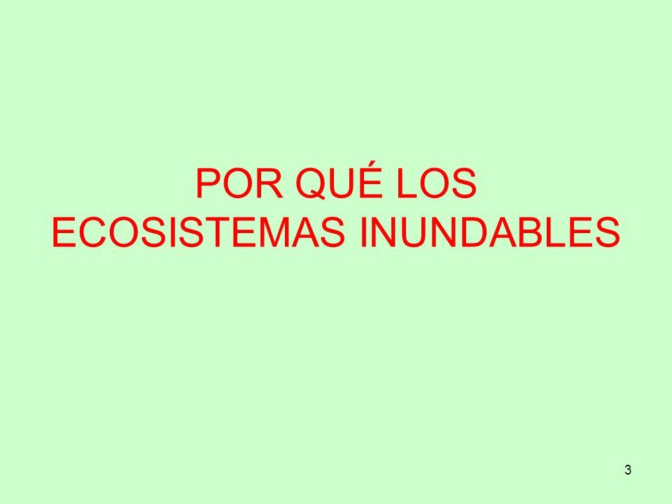 34 Muchas gracias