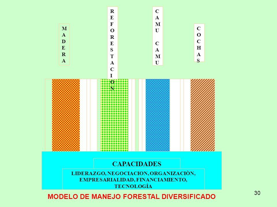 30 MADERAMADERA REFORESTACIONREFORESTACION CAMU CAMUCAMU CAMU COCHASCOCHAS CAPACIDADES LIDERAZGO, NEGOCIACION, ORGANIZACIÒN, EMPRESARIALIDAD, FINANCIA