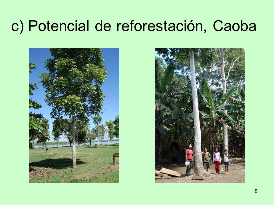 9 d) Potencial de reforestación: lupuna, pashaco blanco