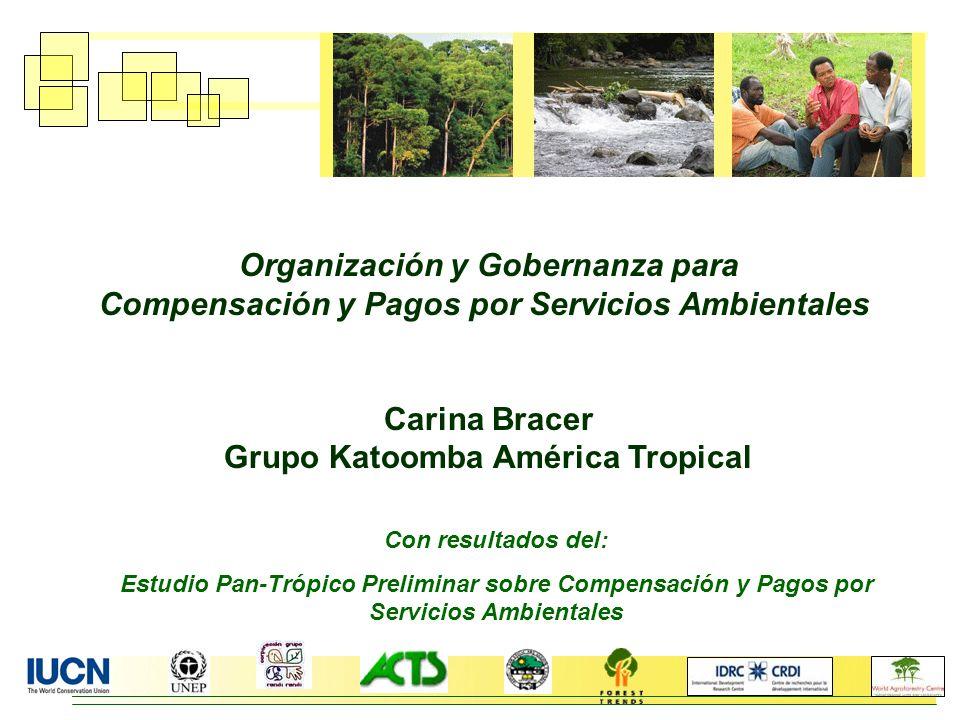 Con resultados del: Estudio Pan-Trópico Preliminar sobre Compensación y Pagos por Servicios Ambientales Organización y Gobernanza para Compensación y