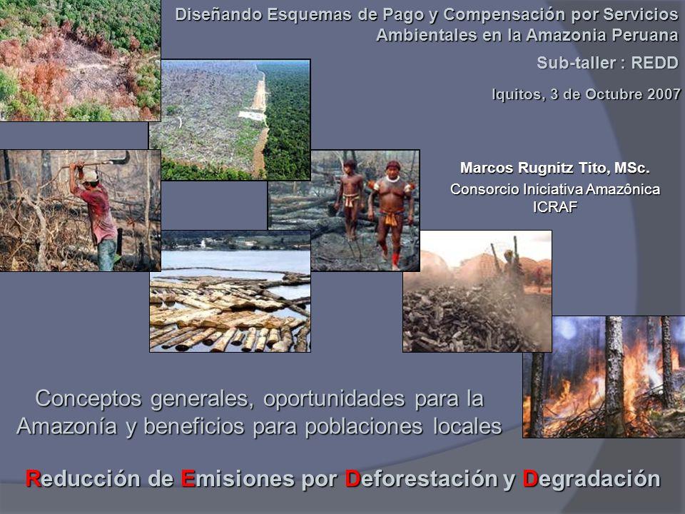 Reducción de Emisiones por Deforestación y Degradación Marcos Rugnitz Tito, MSc. Diseñando Esquemas de Pago y Compensación por Servicios Ambientales e