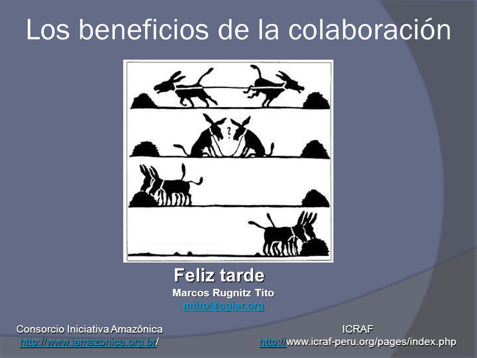 Los beneficios de la colaboración Feliz tarde Marcos Rugnitz Tito mtito@cgiar.org Consorcio Iniciativa Amazônica http://www.iamazonica.org.brhttp://ww