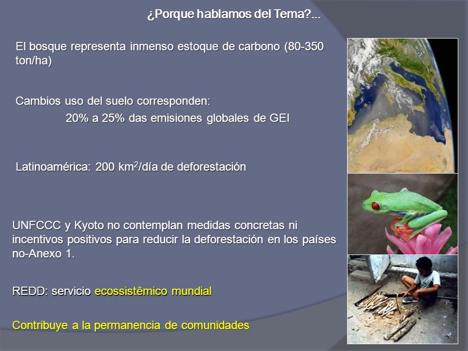Meta Análisis 152 Estudios de Caso Geist and Lambin, 2002 Comprender causas de la deforestación antes de establecer compromisos… * Cattle ranching ** Road development