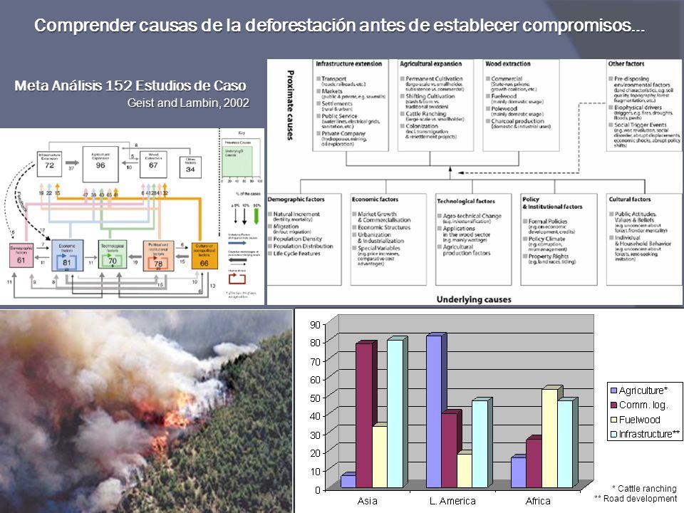 Meta Análisis 152 Estudios de Caso Geist and Lambin, 2002 Comprender causas de la deforestación antes de establecer compromisos… * Cattle ranching **