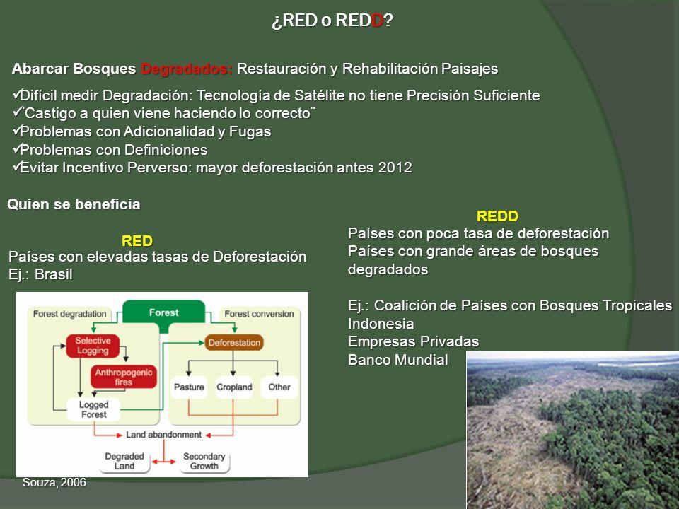 ¿RED o REDD? Quien se beneficia REDD RED Países con elevadas tasas de Deforestación Ej.: Brasil Abarcar Bosques Degradados: Restauración y Rehabilitac