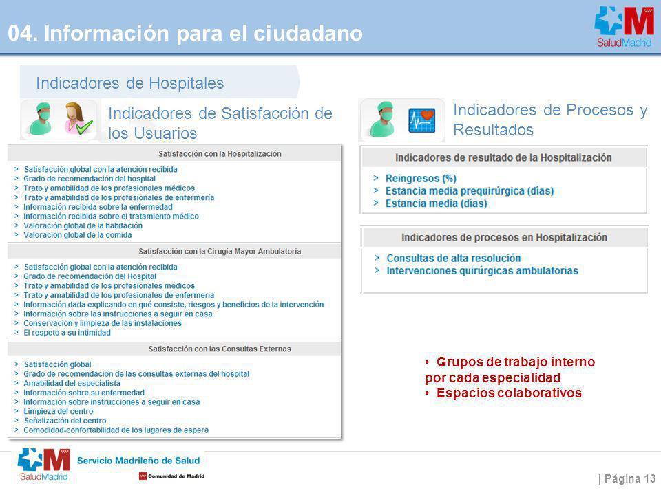 | Página 13 Indicadores de Satisfacción de los Usuarios Indicadores de Procesos y Resultados Indicadores de Hospitales Grupos de trabajo interno por c