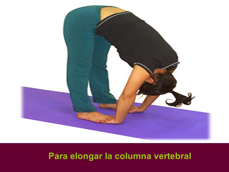 Para elongar la columna vertebral