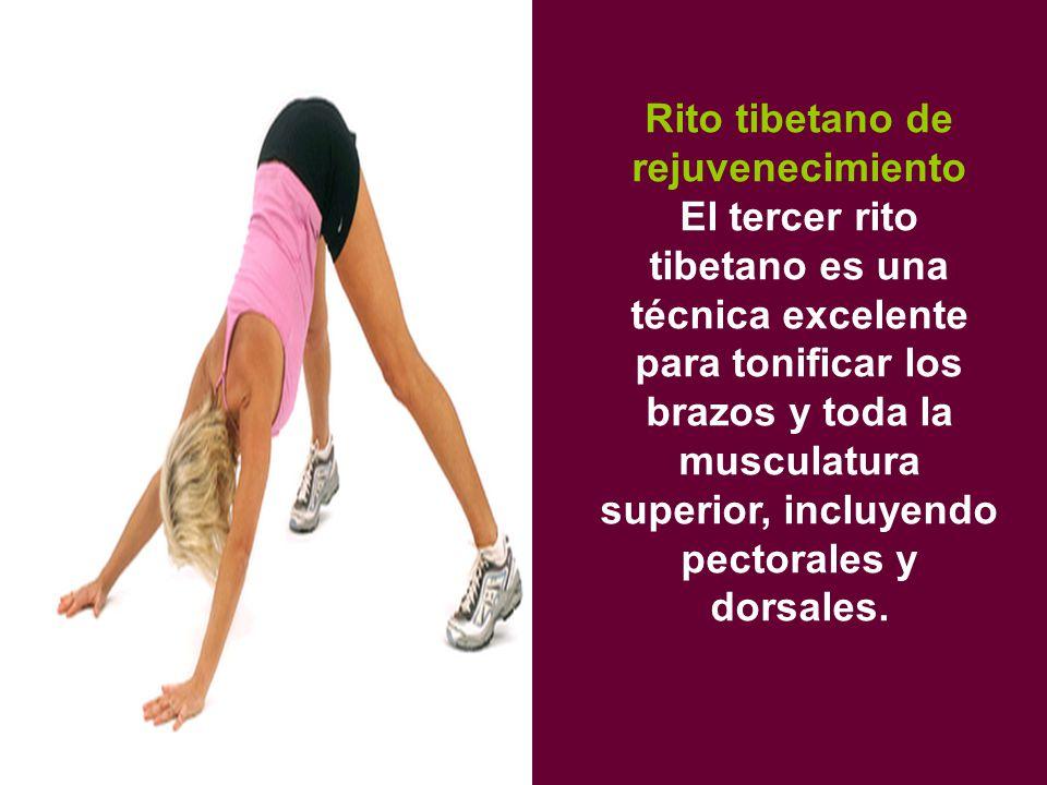 Rito tibetano de rejuvenecimiento El tercer rito tibetano es una técnica excelente para tonificar los brazos y toda la musculatura superior, incluyendo pectorales y dorsales.