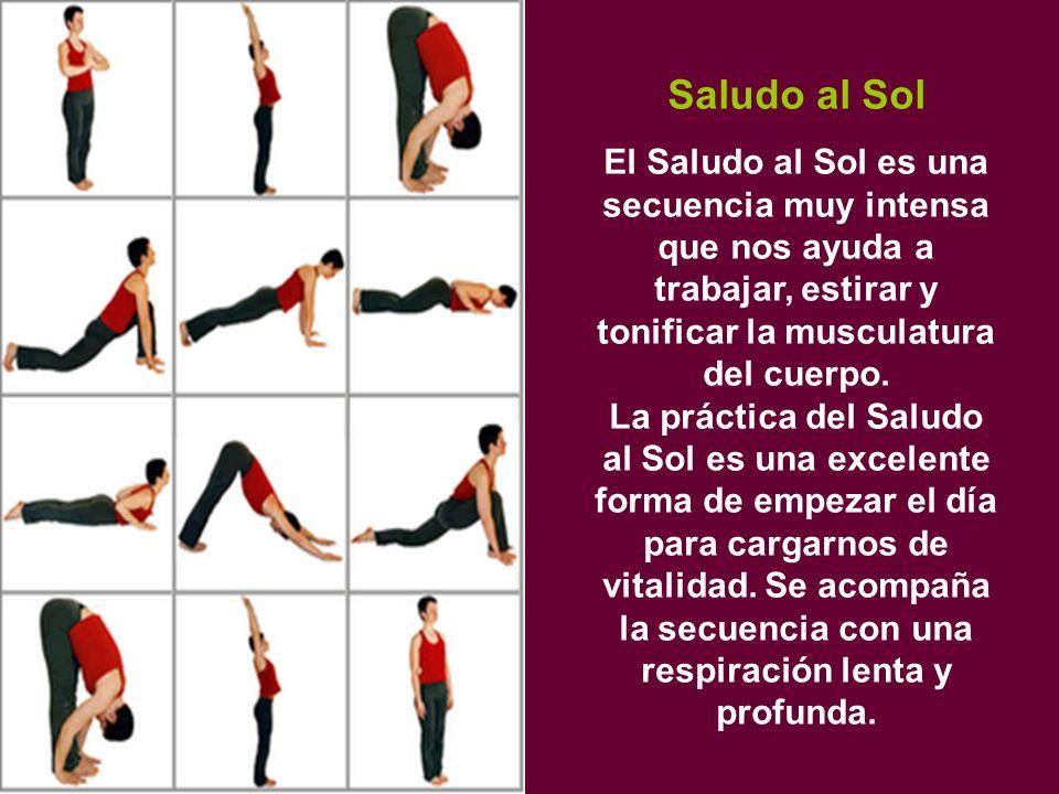 Saludo al Sol El Saludo al Sol es una secuencia muy intensa que nos ayuda a trabajar, estirar y tonificar la musculatura del cuerpo.