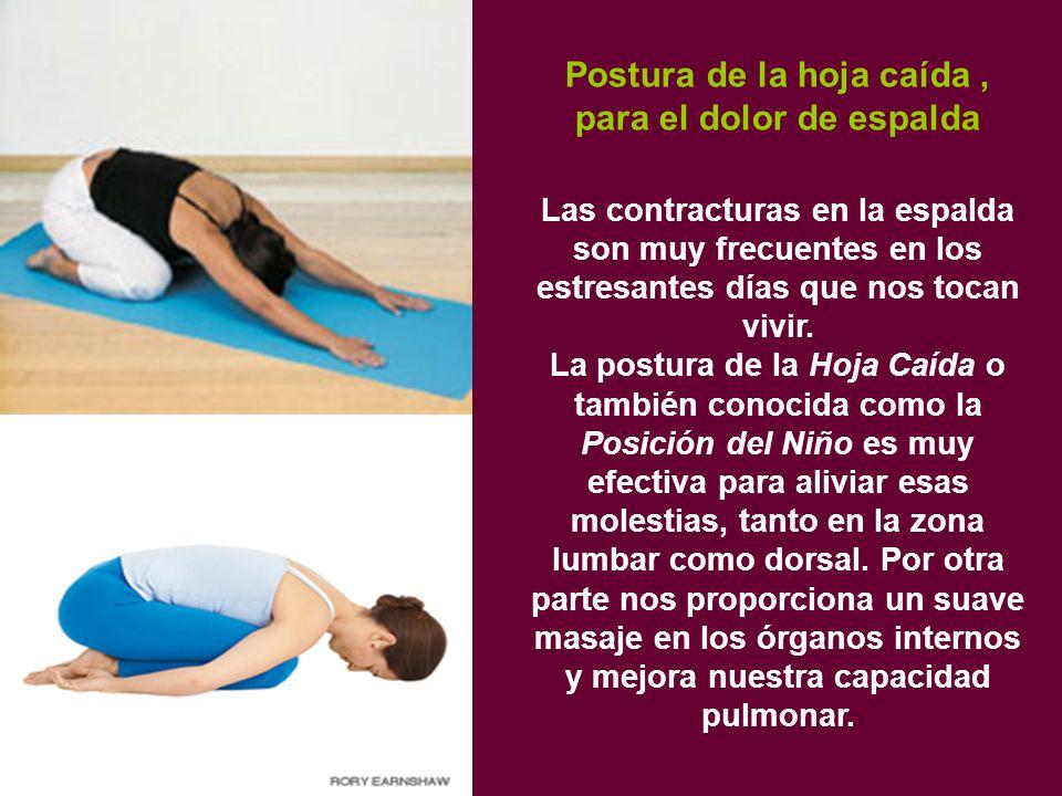 Postura de la hoja caída, para el dolor de espalda Las contracturas en la espalda son muy frecuentes en los estresantes días que nos tocan vivir.
