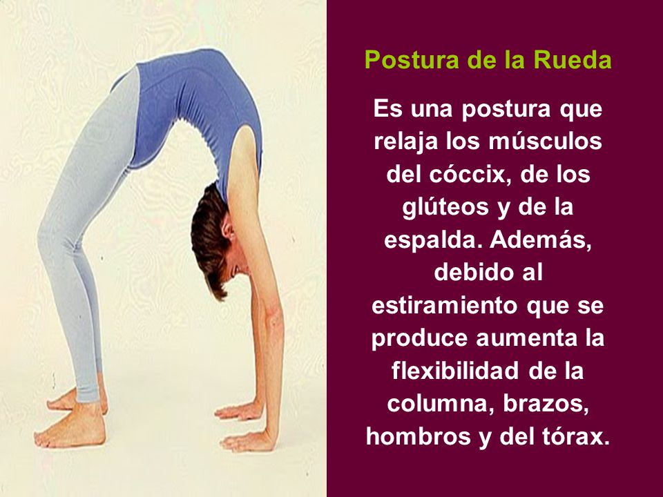 Postura de la Rueda Es una postura que relaja los músculos del cóccix, de los glúteos y de la espalda.