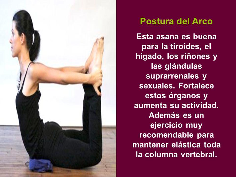 Postura del Arco Esta asana es buena para la tiroides, el hígado, los riñones y las glándulas suprarrenales y sexuales.