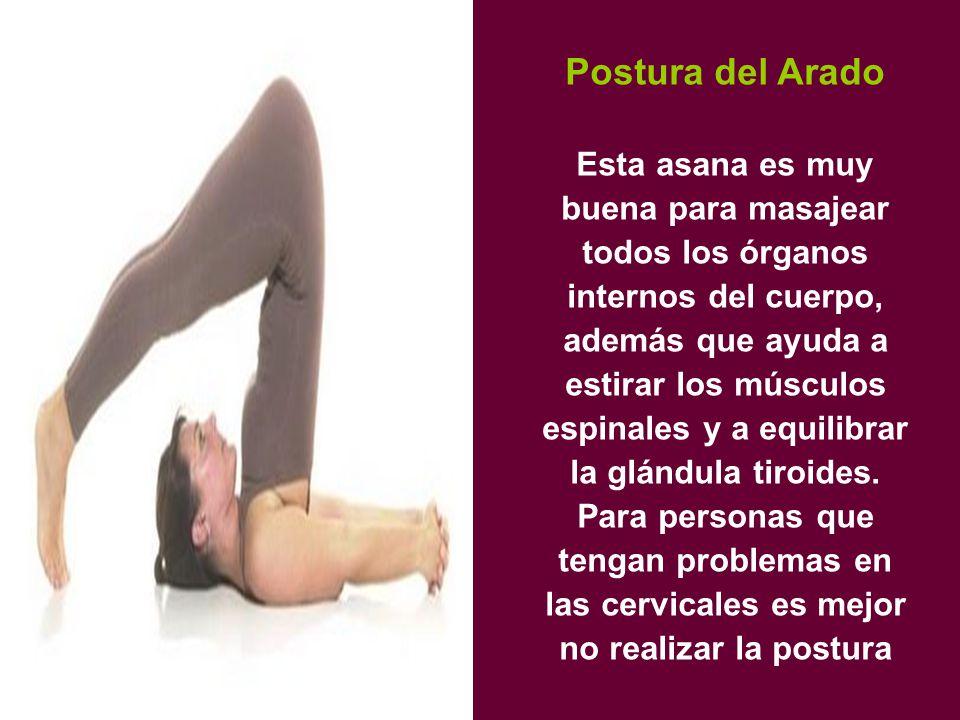 Postura del Arado Esta asana es muy buena para masajear todos los órganos internos del cuerpo, además que ayuda a estirar los músculos espinales y a equilibrar la glándula tiroides.