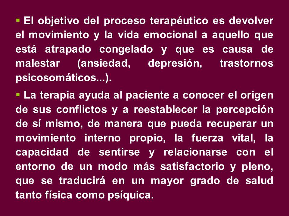  El objetivo del proceso terapéutico es devolver el movimiento y la vida emocional a aquello que está atrapado congelado y que es causa de malestar (ansiedad, depresión, trastornos psicosomáticos...).