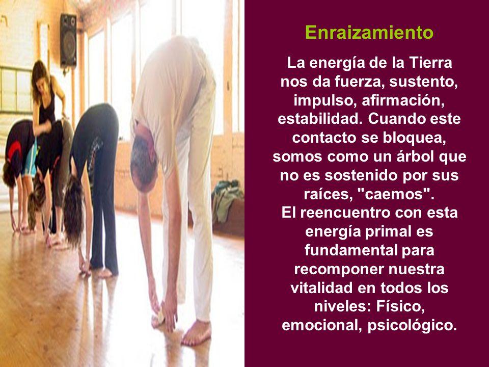 Enraizamiento La energía de la Tierra nos da fuerza, sustento, impulso, afirmación, estabilidad.
