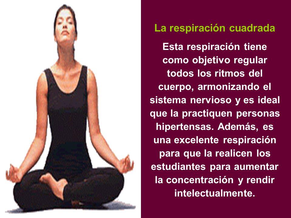 La respiración cuadrada Esta respiración tiene como objetivo regular todos los ritmos del cuerpo, armonizando el sistema nervioso y es ideal que la practiquen personas hipertensas.