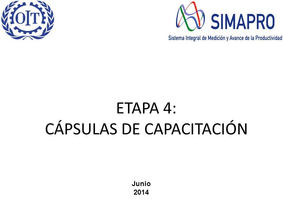ETAPA 4: CÁPSULAS DE CAPACITACIÓN Junio 2014