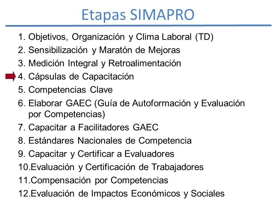 Etapas SIMAPRO 1. Objetivos, Organización y Clima Laboral (TD) 2.