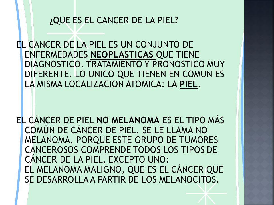HAROLD ESCOBAR CORREA CANCER EN LA PIEL BIOLOGIA JOSE FELIX RESTREPO 902 JORNADA MAÑANA